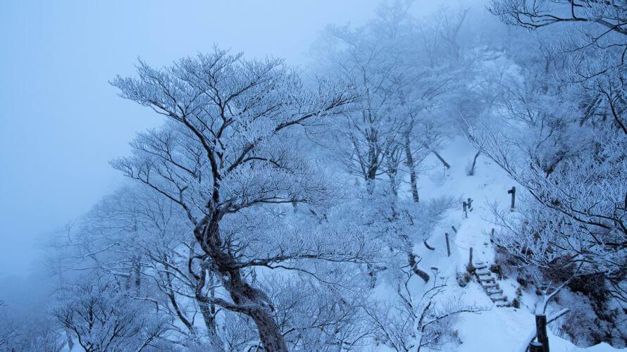満点を狙う中学受験国語の具体的解法-アナと雪の女王を読み解く(前編)