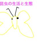 【中学受験】楽しい理科第8回 一問一答と解説 生物編②昆虫「昆虫の生活と生態」
