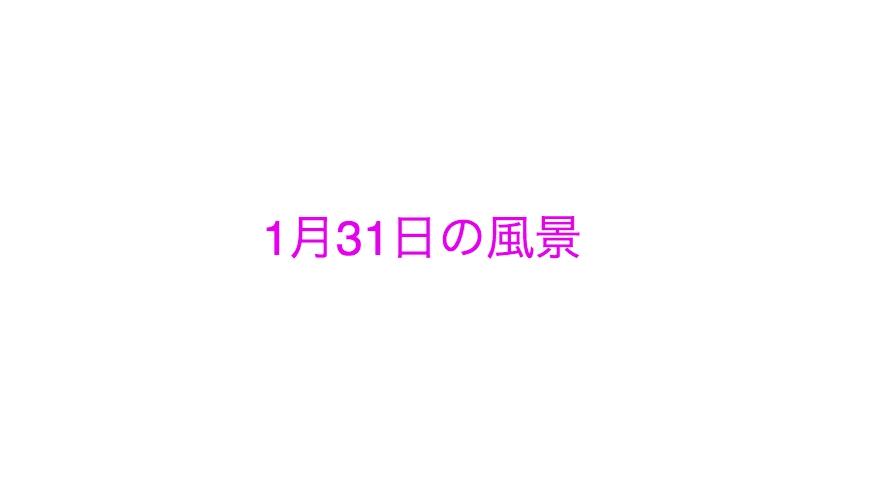 【中学受験】私の1月31日の過ごし方 ※注:勉強については一切書いておりません